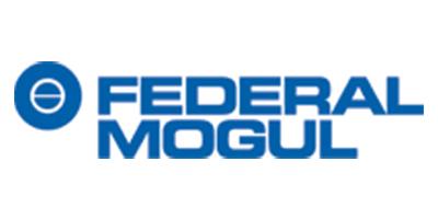 Federal Mogul