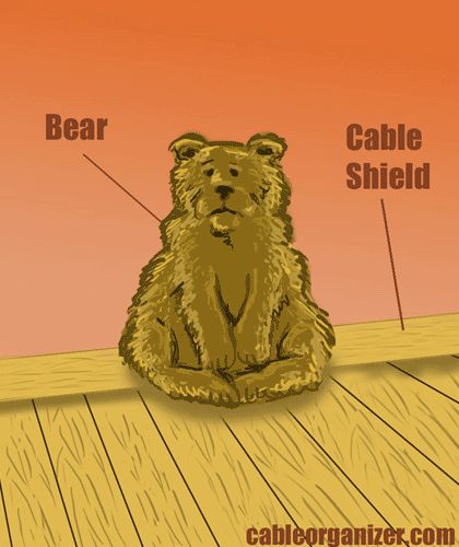 bear in front of Cable Shield