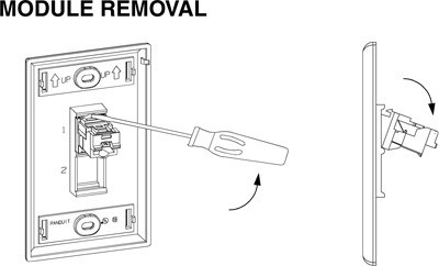 diagram of removing a module from faceplate