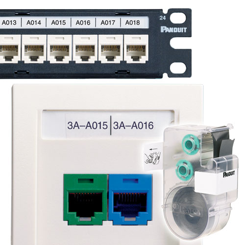 panduit P1 Network Component Labels in use on patch panel and wallplate - icon