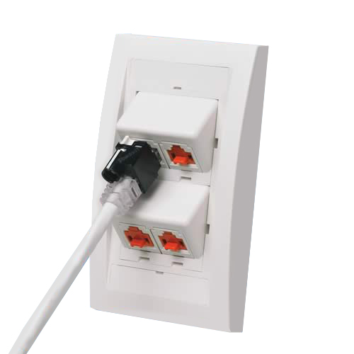 Panduit RJ45 Plug Lock-In Device in use on wallplate