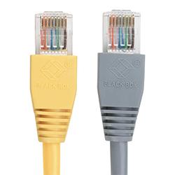 Black Box GigaBase 350 Cat5e Patch Cable (UTP)