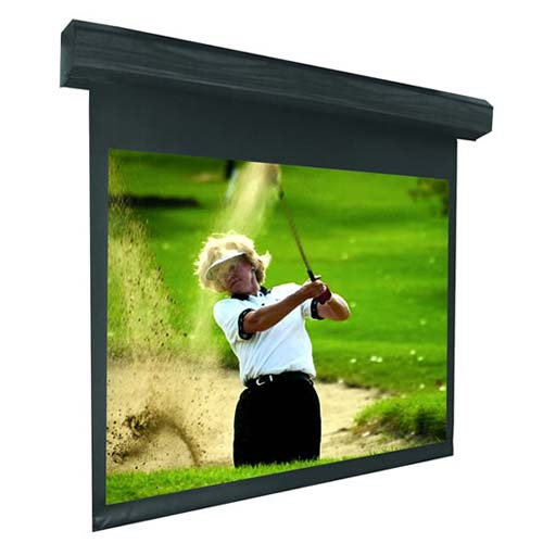 Vutec LECTRIC I Video Projection Screen - icon